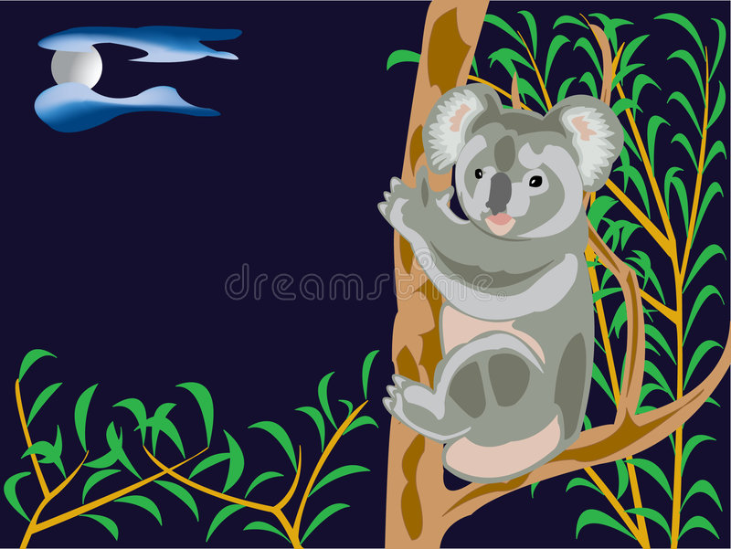 Ours de koala illustration libre de droits