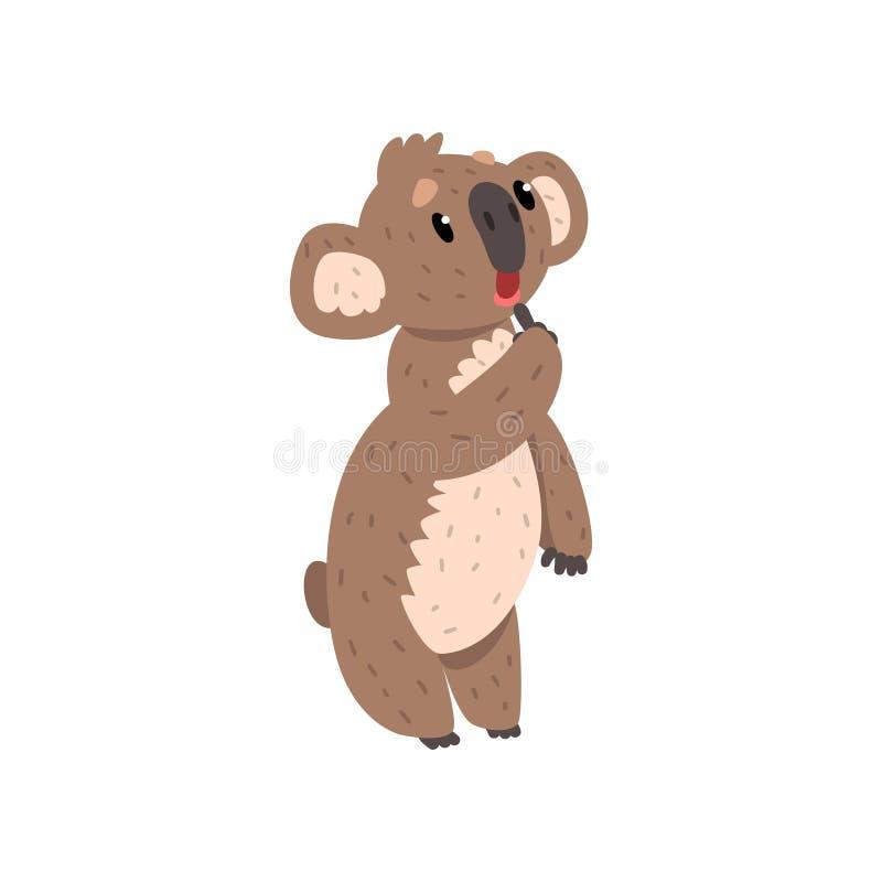 Ours de koala songeur doux, illustrations animales marsupiales australiennes de vecteur de caractère sur un fond blanc illustration de vecteur