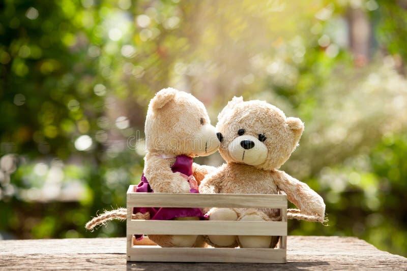 Ours de nounours du brun deux de baiser haut d'ours de fin bel dans la boîte en bois dessus images stock