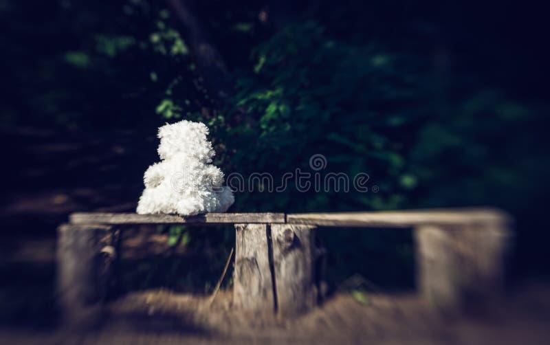 Ours et banc de nounours isolés tristes dans le vieux jardin photographie stock libre de droits