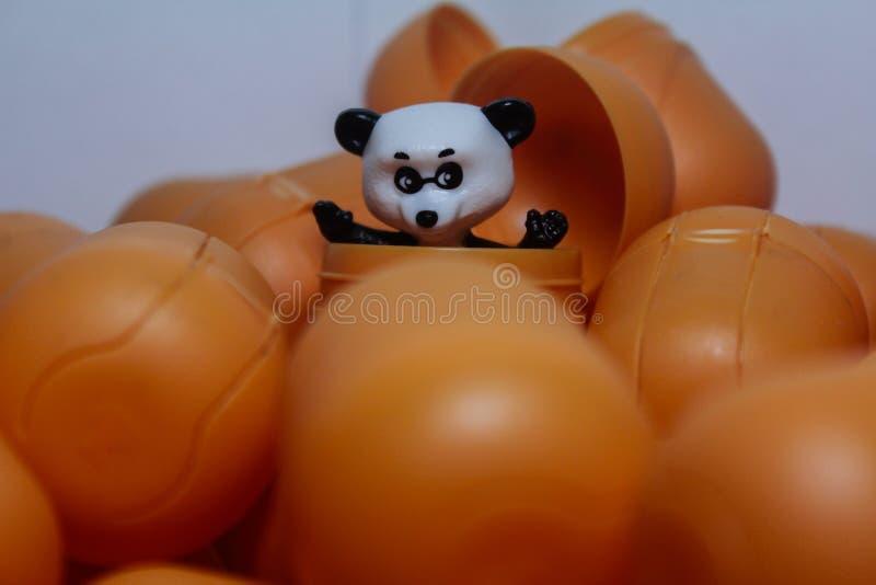 ours qui aime gratuite photos stock
