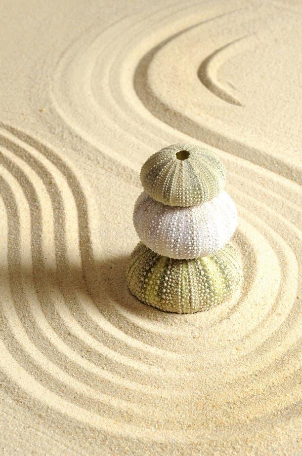 Oursin en sable images libres de droits