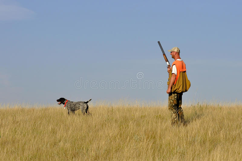 Out Bird Hunting stock photography
