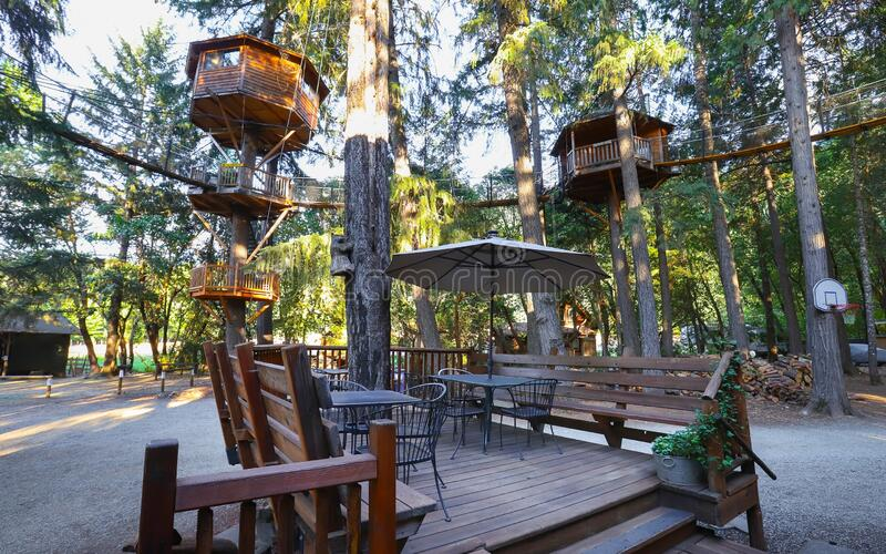 Out'N'About Treehouse Treesort near Cave Junction, Oregon. Cave Junction, Oregon - July 2019:  Out`N`About Treehouse Treesort, built by Michael Garnier, is a royalty free stock photo