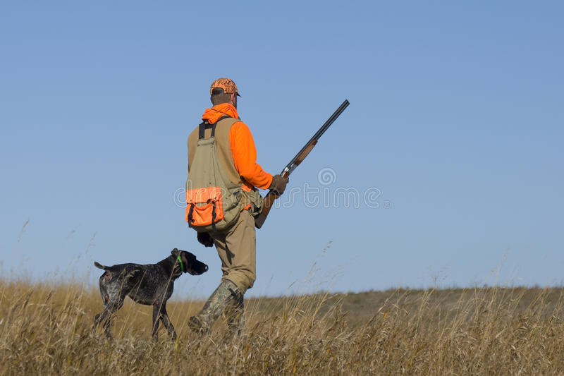 Out Pheasant Hunting. Hunter out with his dog hunting