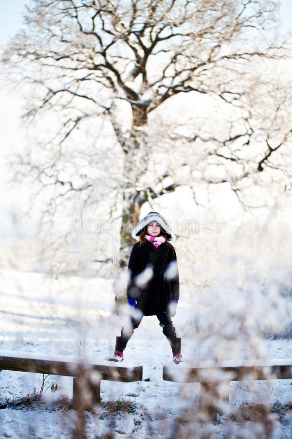 Out in the snow royalty free stock photos