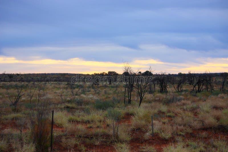 outback stockbild