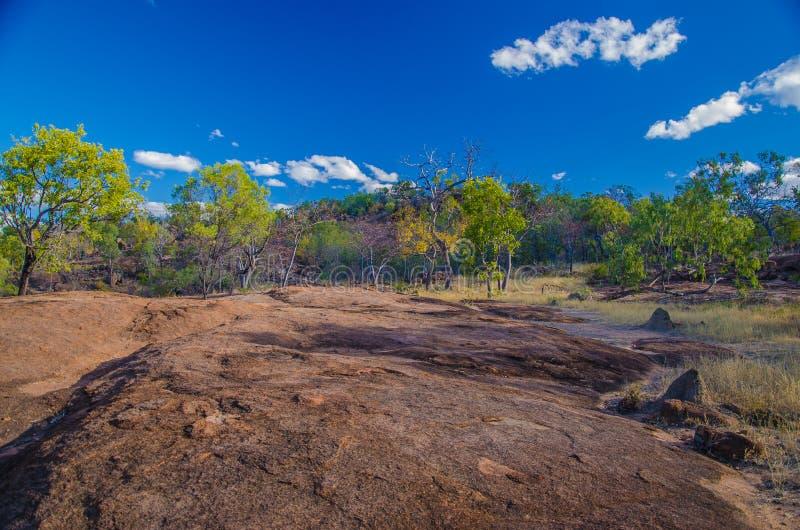 outback stockbilder