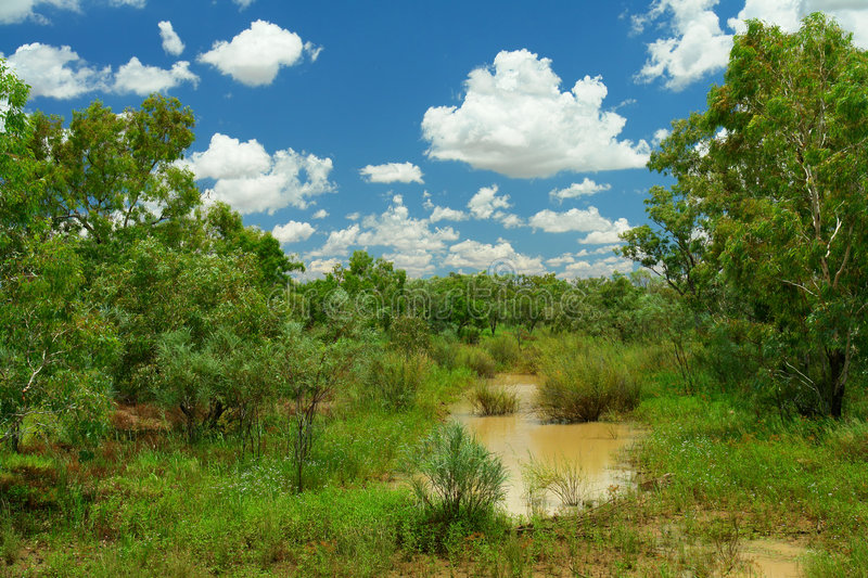 Download Outback stock photo. Image of green, scenery, landscape - 8973728