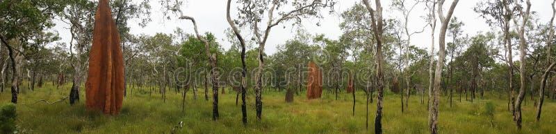 Outback Australia royalty free stock photo