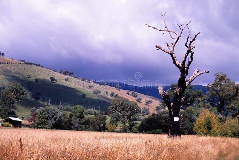 Outback Tempesta Fotografia Stock Libera da Diritti