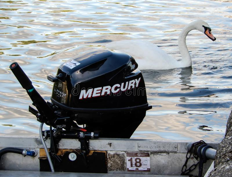 Outboard and swan. A Mercury 9.9 four stroke outboard motor and a mute swan on the River Thames stock photos