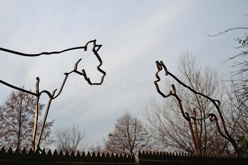 Outdated iron silhouette sculptures in the shape of German Boxer dogs with cropped ears and tails, a practice prohibited in German royalty free stock image