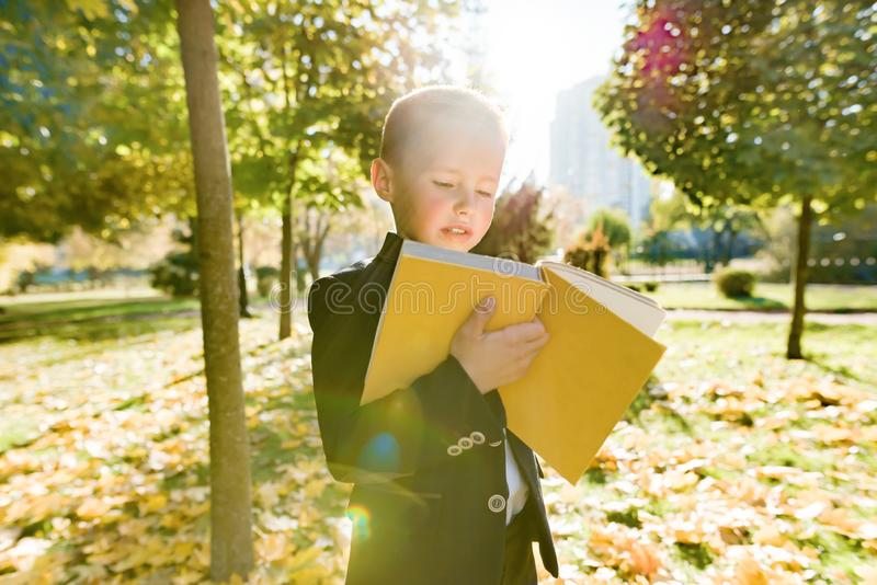 Outdoor autumn portrait of schoolboy reading book, background of yellow trees in the park, boy in jacket, golden hour. Back to school royalty free stock photo