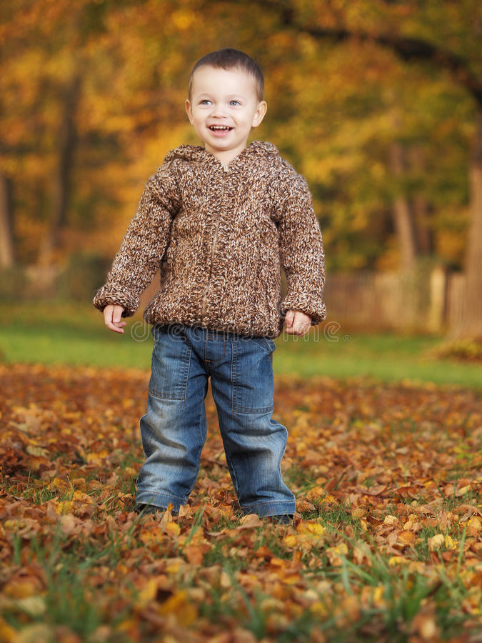 Download Outdoor boy stock image. Image of autumn, nature, fall - 27708947