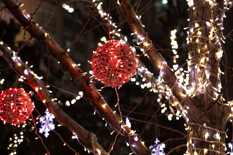 Outdoor Christmas lights on the tree, New Year City Decoration stock photography