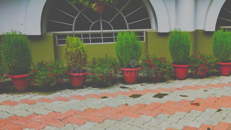 Outdoor decorations. Home lawn pathway decoration ideas royalty free stock photo