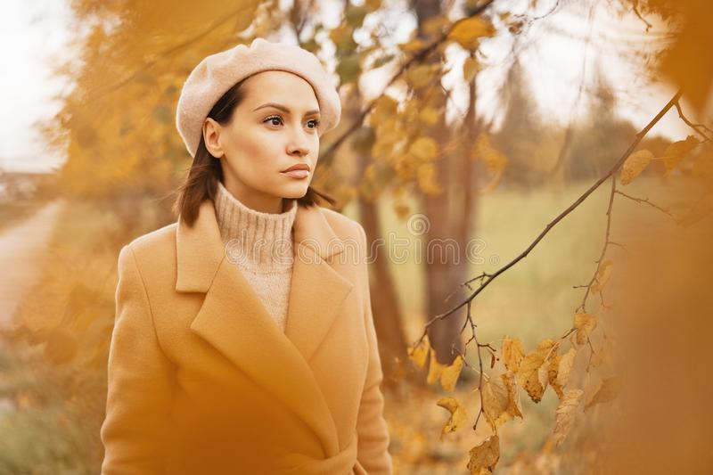 Beautiful lady surrounded autumn leaves royalty free stock image