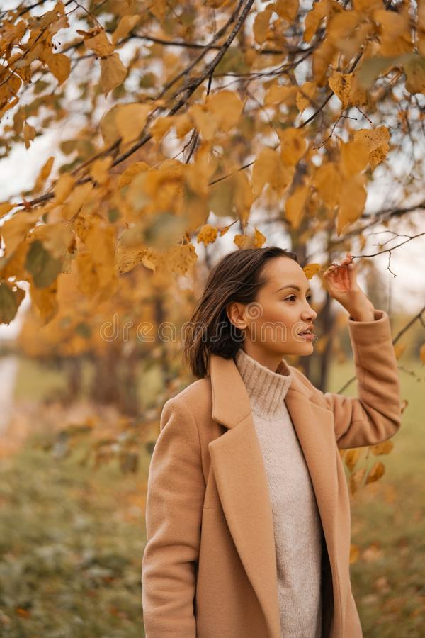 Beautiful lady surrounded autumn leaves stock photos