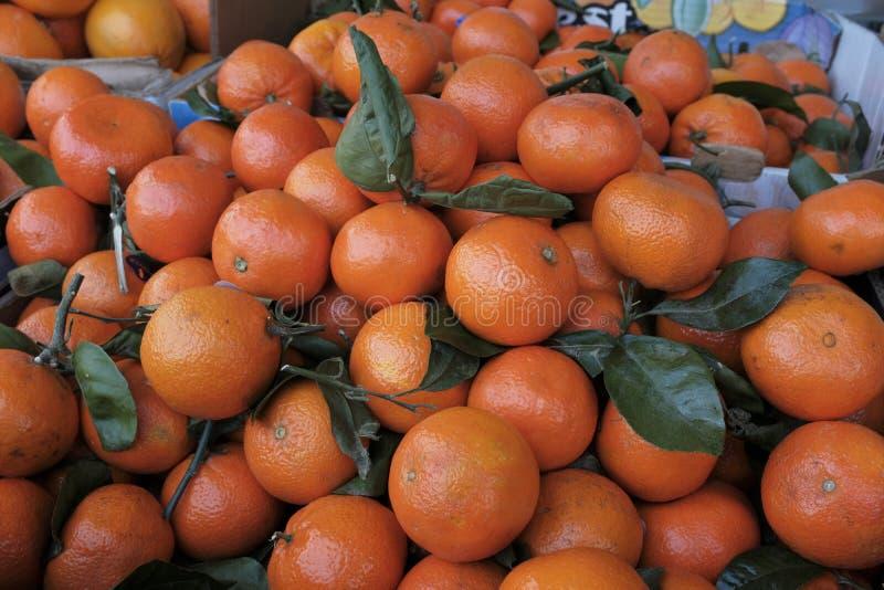Big beautiful, ripe tangerines royalty free stock images