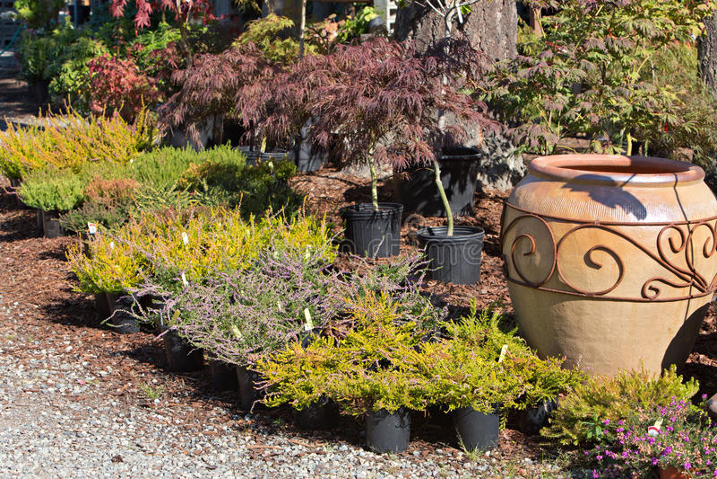 Outdoor Garden Nursery