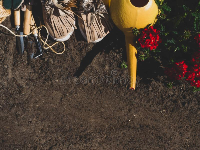 Outdoor gardening tools, geranium, watering can and boots on the soil. Copy space royalty free stock image