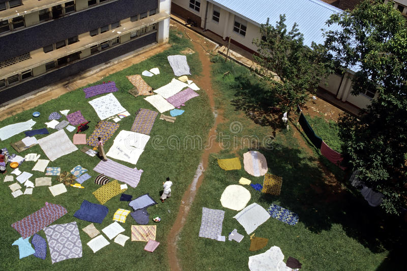 Outdoor Laundry in Mulago Hospital, Kampala royalty free stock images