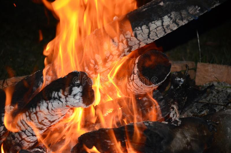 Outdoor living, camp fire,. Burning logs royalty free stock images