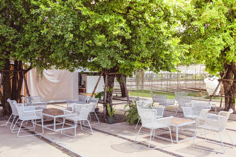 Outdoor living corner under the tree. Outdoor living corner have a white chair under the green tree royalty free stock photography