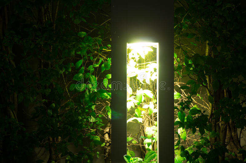 Outdoor mood lighting in the evening with bright and beautiful r. Ectangular lamp casting light and shadows onto a hedge row at night. Represents peace and stock photo