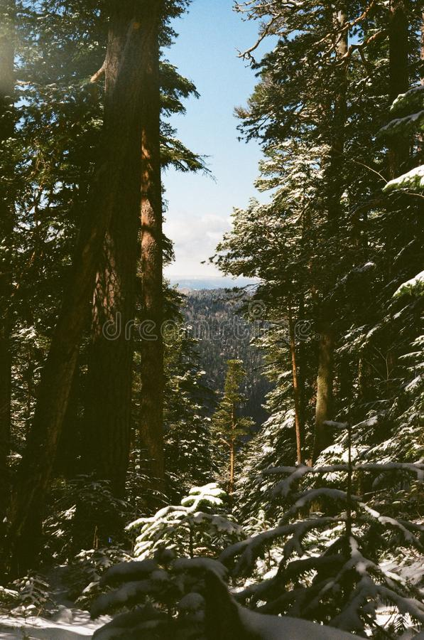 Outdoor mountains royalty free stock images