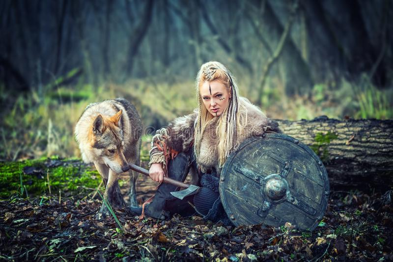 Outdoor northern warrior woman with braided hair and war makeup holding shield and ax with wolf next to her ready to attack -. Movie theme of woman warrior stock photo