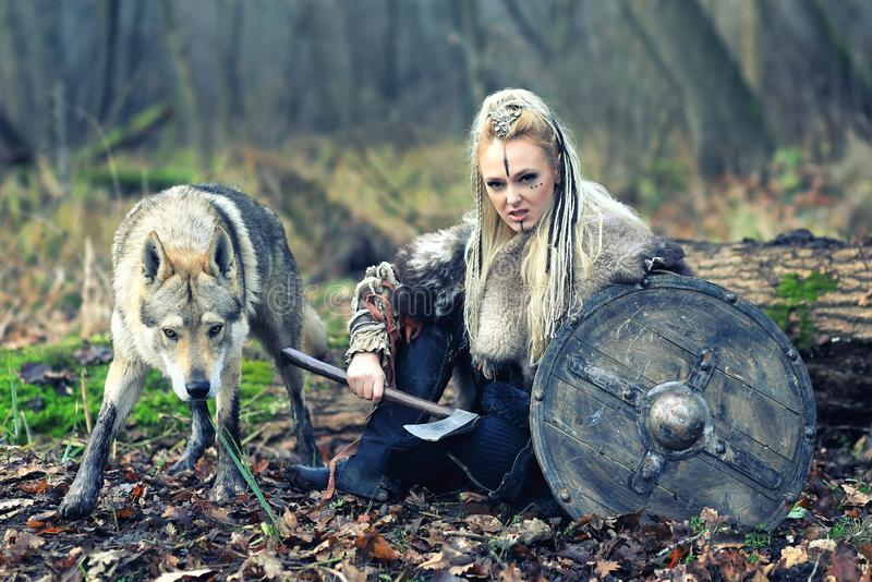 Outdoor northern warrior woman with braided hair and war makeup holding shield and ax with wolf next to her ready to attack -. Movie theme of woman warrior stock images