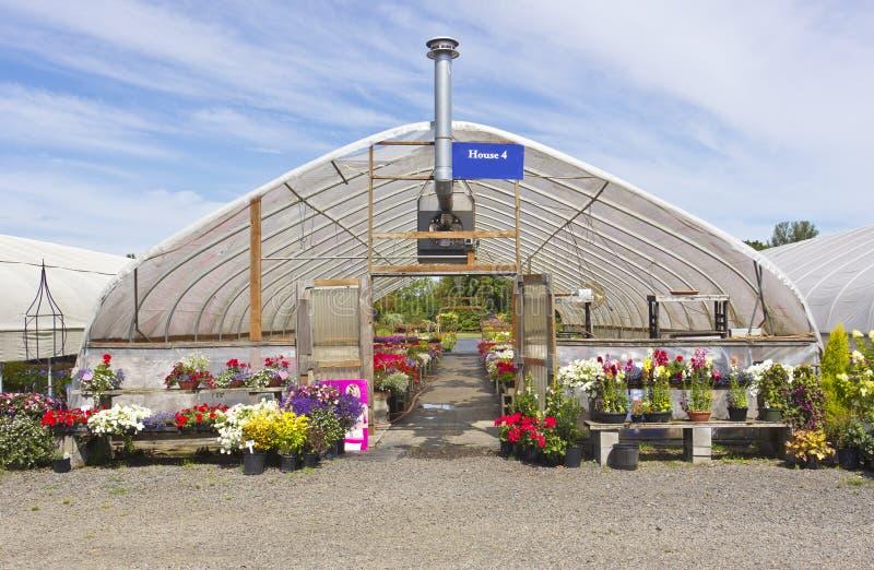 Outdoor nursery Willamette valley Oregon. Outdoor nursery and canopies Willamette valley Oregon stock images