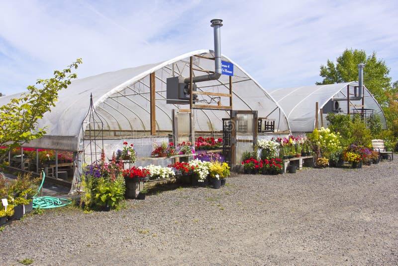 Outdoor nursery Willamette valley Oregon. Outdoor nursery and canopies Willamette valley Oregon royalty free stock photography