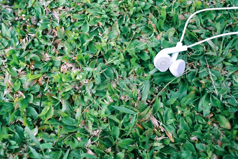 Outdoor photography of earphone object on the grass background. In the morning.nTry to tell about philosophy of music with nature royalty free stock image