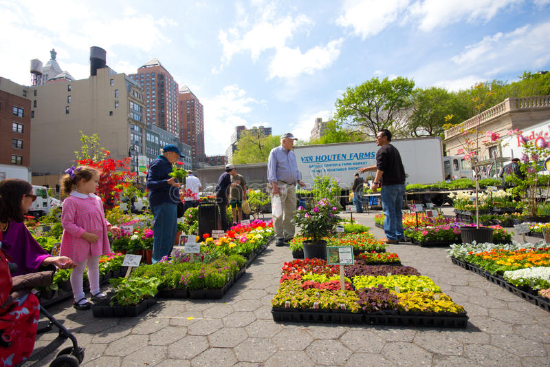 Outdoor Plant Sale. NEW YORK CITY - APR. 20: Spring plant sale at Union Square Greenmarket in NYC on Apr 20, 2012. This world famous farmers' market began in royalty free stock photography