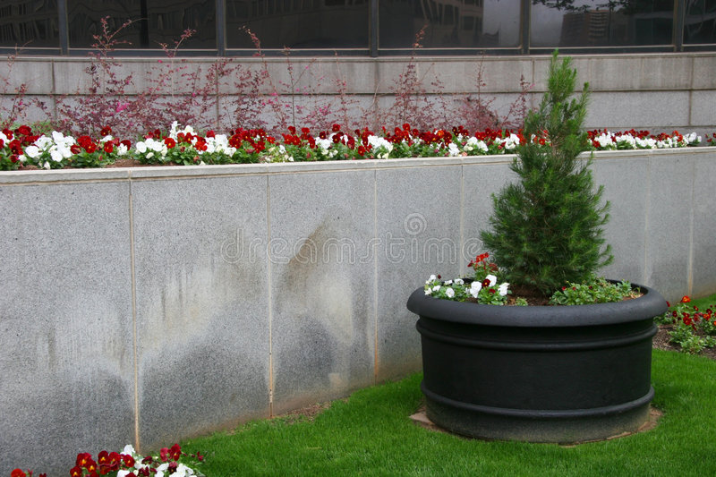 Outdoor Planter royalty free stock photography