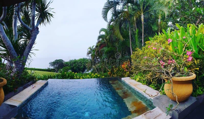 Outdoor pool in Bali. An outdoor pool in Bali, Indonesia royalty free stock photo