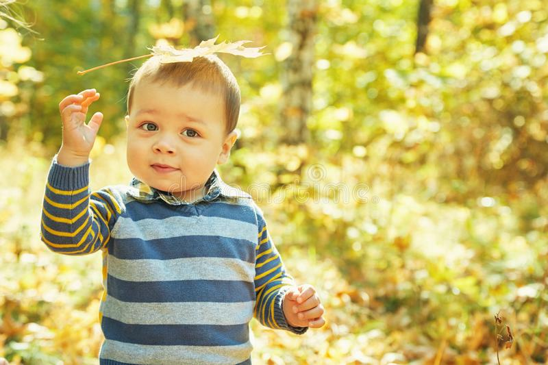 Outdoor portrait of baby in an autumn park. walking little boy. Outdoor portrait of baby in an autumn park. walking little boy stock photos