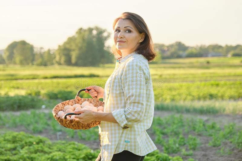 Outdoor portrait of farmer woman with basket of fresh chicken eggs, farm stock photo