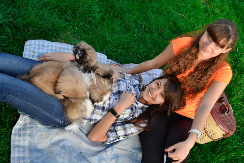Outdoor portrait of two cute girls hugging with ginger cat and puppy of Chinese Shar Pei dog on green grass. Ywo happy smiling che stock photo