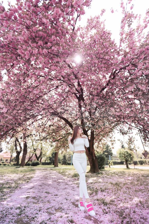 Outdoor portrait of young beautiful happy smiling lady posing near flowering tree. Model wearing stylish accessories stock images