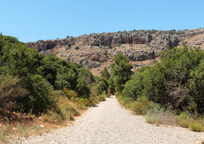Outdoor road between two rows of bushes toward gra. Y and orange rocks in Galilee royalty free stock photo