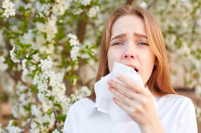 Outdoor shot of discontent young girl has seasonal allergy, uses tissue, poses over blooming tree, has rhinitis and sneezing, stock photography