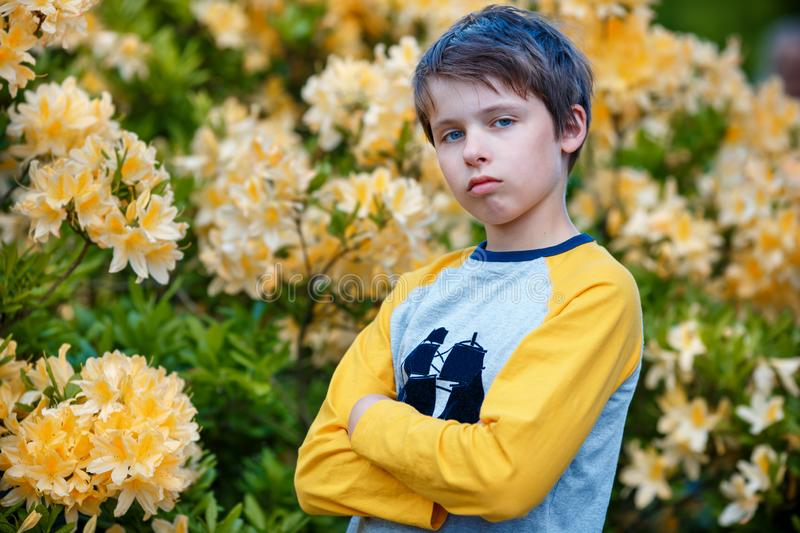 Outdoor spring portrait of unhappy 10 year old boy posing in the garden next to blossoming yellow Rhododendron stock images
