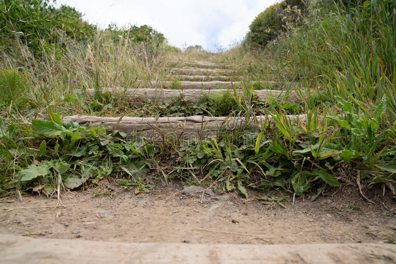Outdoor stairs on dirt path overrun with grass leading upward royalty free stock photography