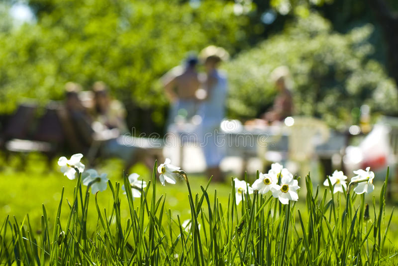 Outdoor Summer Party. People at outdoor summer party or picnic with daffodil flowers in the foreground royalty free stock photography