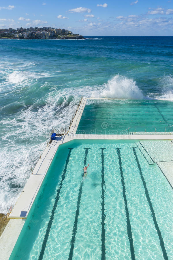 Outdoor swimming pool at Bondi Beach, Sydney. View of a man swimming in the outdoor pool at Bondi Beach and houses in a distance during daytime royalty free stock images