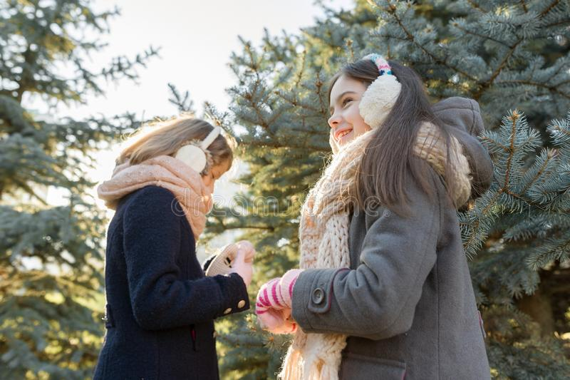 Outdoor winter portrait of two little girls near Christmas tree stock image